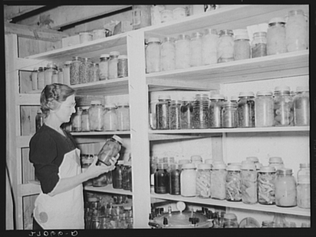 Wife of tenant purchase client with canned goods. Saline County, Illinois (see 27031-D)