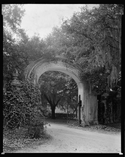 Wormsloe Plantation, Savannah vic., Chatham County, Georgia