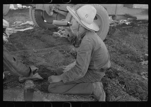 "Young Mexican boy, carrot worker, eating ""second breakfast"" in field near Santa Maria, Texas. The lunches of the Mexican workers usually consist of tortillas and fried onions and cold coffee"