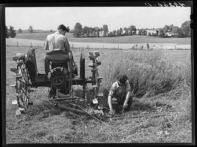 Adjusting cutter. Farm near Rockville, Maryland