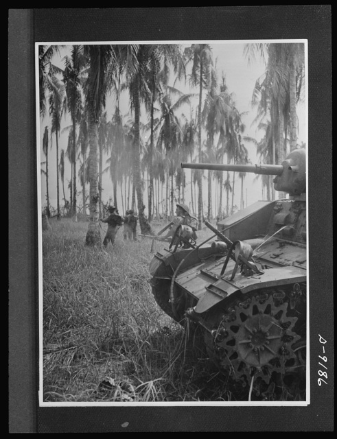 Australian fighting forces in action at Papua. Infantrymen advance as an Australian-manned American tank blast Japanese pillboxes and clear trees of snipers. In one morning's fighting this tank's machine guns fired 10,000 rounds. The picture was taken during actual warfare