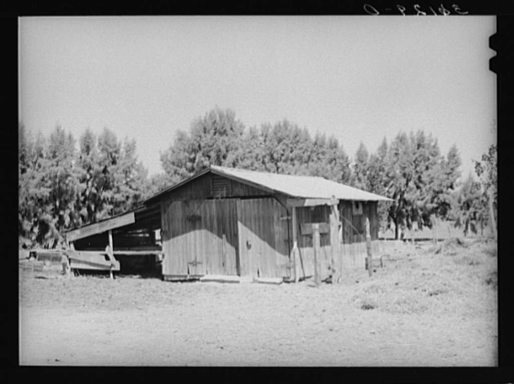 Barn on farm of tenant purchase client in Maricopa County, Arizona