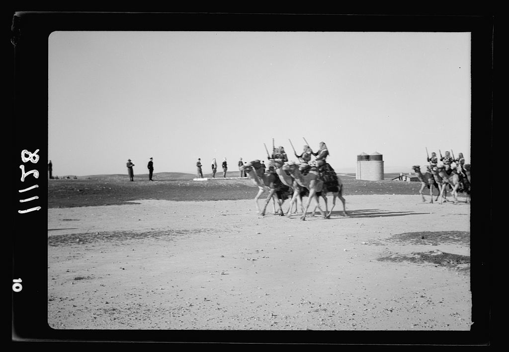 Beersheba, inspection of Camel Corps by H.E. (i.e., His Excellency) Sir Harold McMichael. Camels trotting past the observation dais