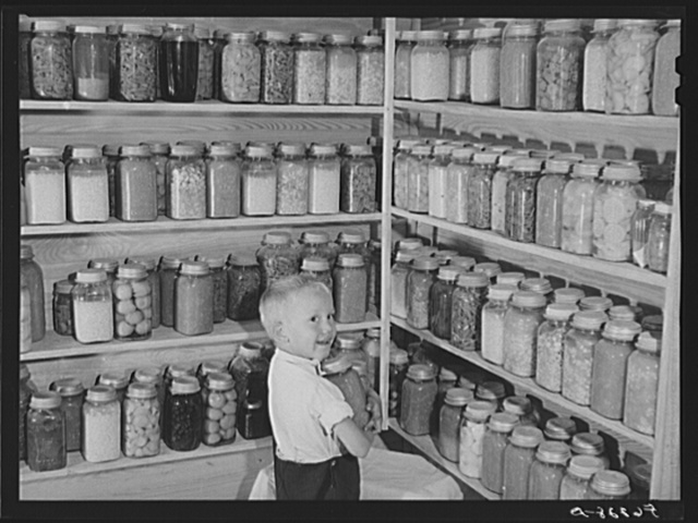 Bobby Willis, son of W.H. Willis, FSA (Farm Security Administration) borrower, getting some of their canned goods off the shelves his father built in their home near Yanceyville, North Carolina