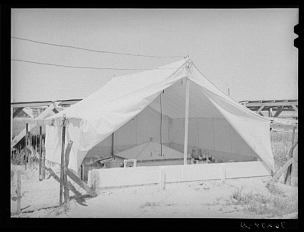 Breeder house for chickens at the Casa Grande Valley Farms. Pinal County, Arizona