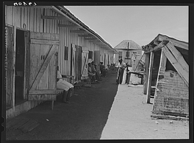 Camp for migratory agricultural workers of the Phillips Packing Company in Vienna, Maryland. On the left are the living quarters and on the right the cook houses
