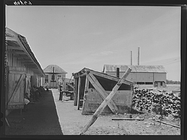 Camp for migratory workers of the Phillips Packing Company at Vienna, Maryland. On the left are the living quarters, in the center the cook-houses and in the background on the right the factory