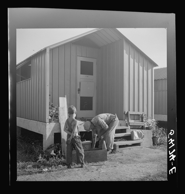 Camp member who does general carpentry work jobs during slack packing house season builds a window box for his shelter at Osceola migratory labor camp. Belle Glade, Florida
