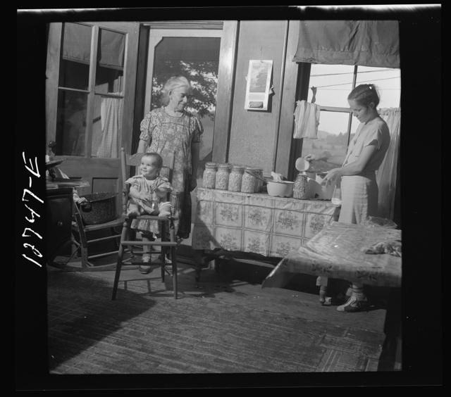Canning beans in farm kitchen near Bristol, Vermont