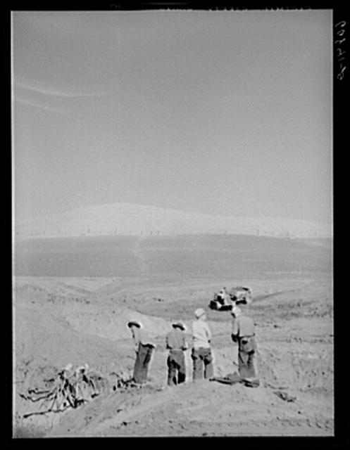 CCC (Civilian Conservation Corps) boys cooperating with Soil Conservation building erosion dam. Monona County, Iowa