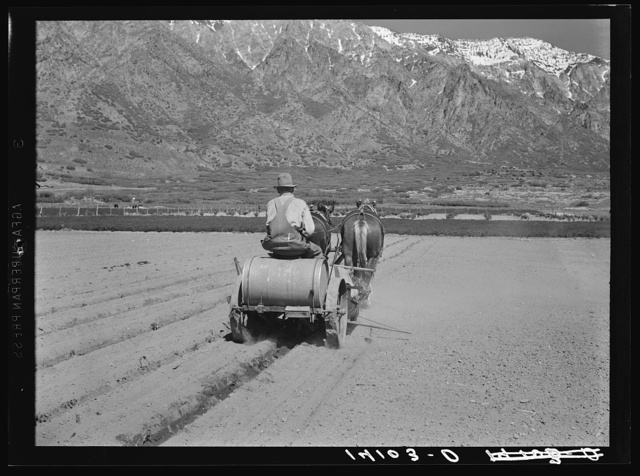 C.E. Toombs, Cache County, Utah, Farm Security Administration rehabilitation client, drives a new tomato planting machine bought with part of a Farm Security Administration loan