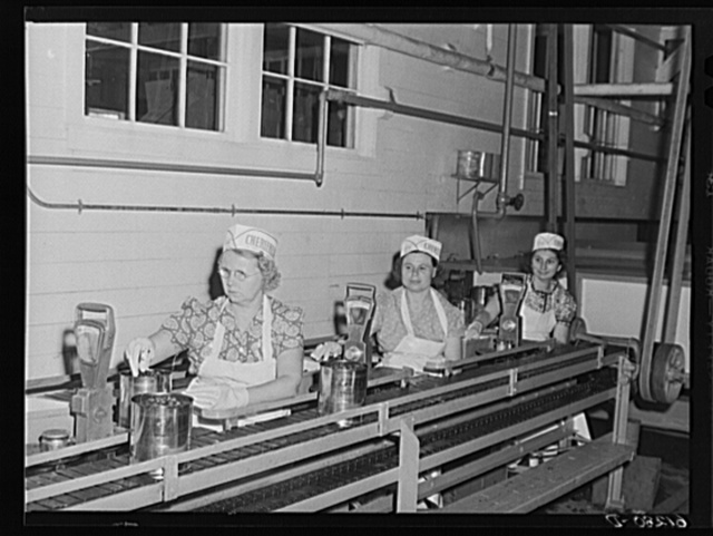 Checking weight of five-pound cans of cherries. Canning plant, Sturgeon Bay, Wisconsin