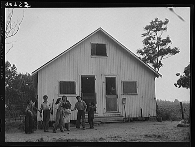 Children of migratory agricultural workers near Cedarville, New Jersey