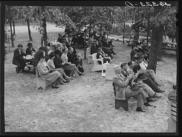Citizens of Caswell County listening to speakers after a picnic and barbecue at the CCC (Civilian Conservation Corps) camp. They had just attended a county land use planning meeting in the courthouse in Yanceyville, North Carolina