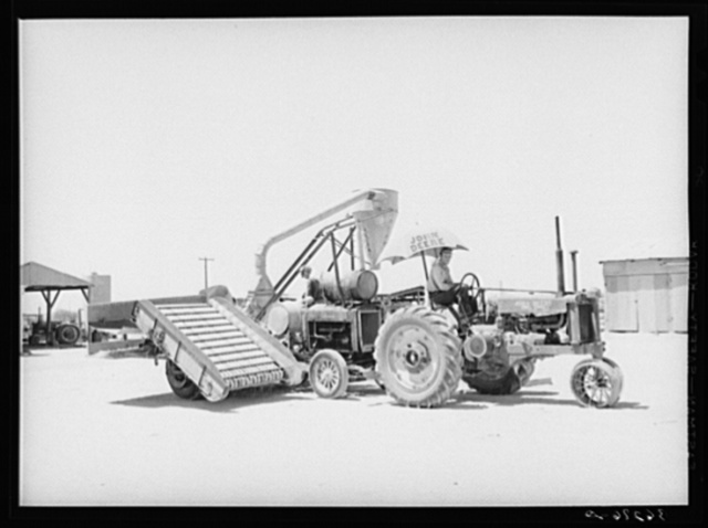 Combination hay loader and chopper used at the Casa Grande Valley Farms. Pinal County, Arizona. This machine was developed by members of the cooperative with the help of Mr. Walton, regional FSA (Farm Security Administration) farm supervisor
