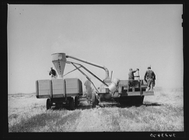 Combined hay picker-upper and chopper developed by members of the Casa Grande Valley Farms, Pinal County, Arizona, with the aid of Mr. Walton, FSA (Farm Security Administration) regional farm supervisor. After hay is chopped, it is loaded into a truck which drives by the side of the chopper and is thence taken to the feed barns