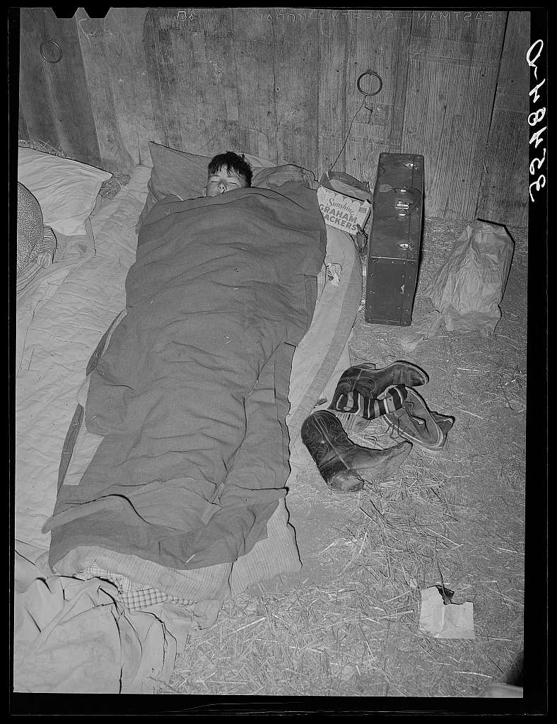 Cowboy asleep in cattle show barn at San Angelo Fat Stock Show. San Angelo, Texas. At nearby all stock shows the working cowboys bring along their camp beds and sleep in the barns