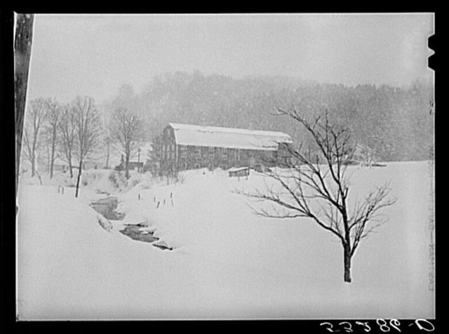 Dairy barn and farm during snowstorm near Barnard. Windsor County, Vermont