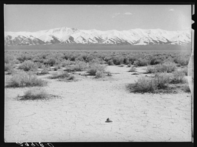 Desert. Lander County, Nevada