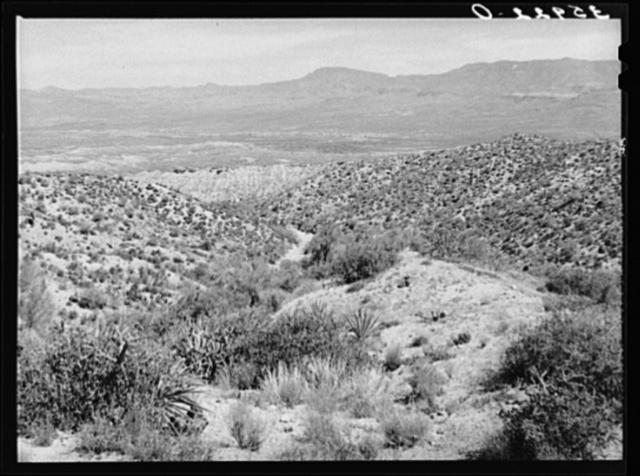 Desert scene along the Apache Trail. Gila County, Arizona