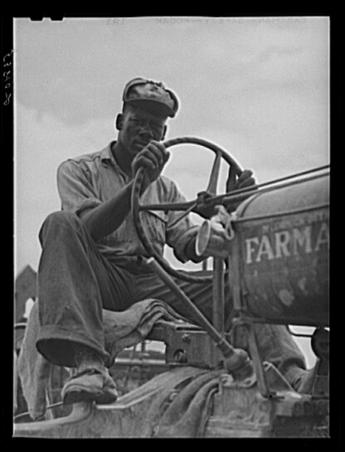 Driver of combine threshing oats on La Delta Project. Thomastown, Louisiana