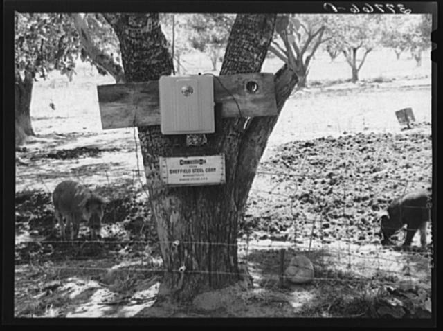 Electric fence used on farm in Animas River Valley. La Plata County, Colorado