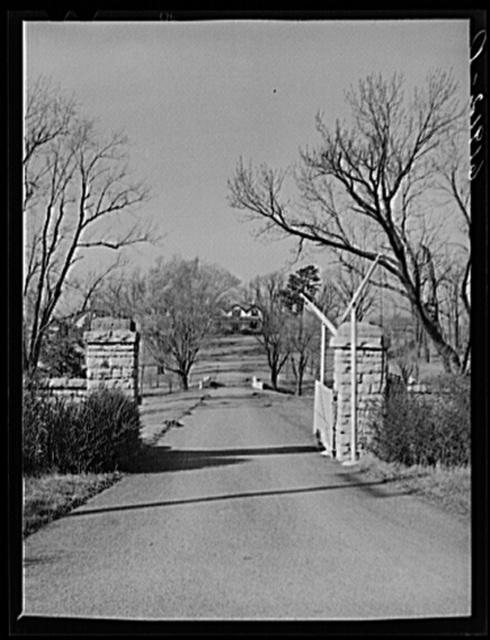 Entrance to horse farm. Fayette County, Kentucky