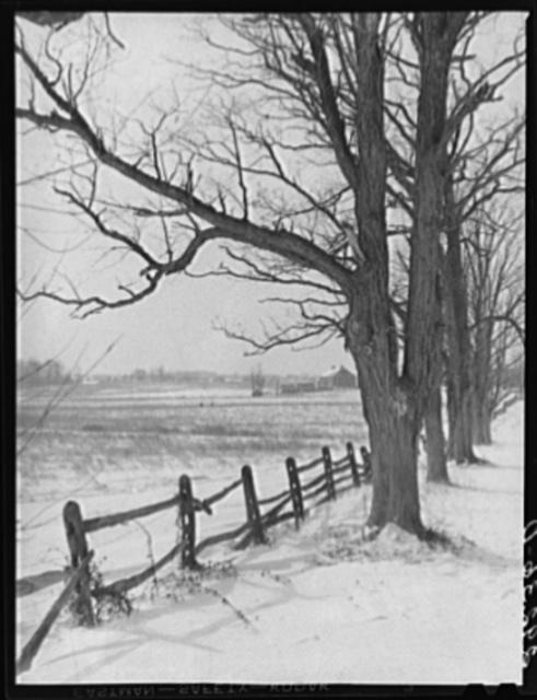 Farm scene. Montgomery County, Maryland