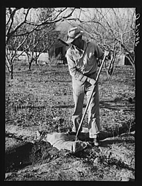 Farmer using sacking to bank irrigation ditch. Placer County, California. He is from Oklahoma