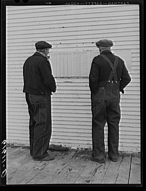 Farmers looking at ballots posted outside of schoolhouse. Election day, McIntosh County, North Dakota