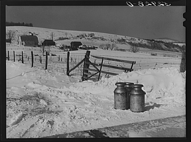 Farmer's milk cans on highway waiting to be picked up by trucks near Frederick, Maryland