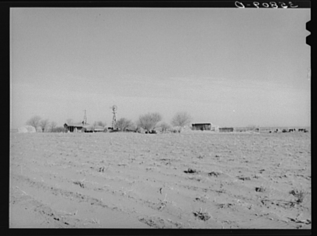 Farmstead in the high plains. Dawson County, Texas. Windblown field in the foreground