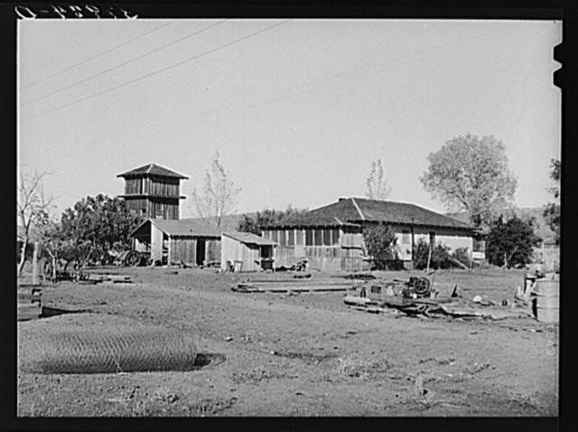 Farmstead of John Frost, small farmer in Tehama County, California