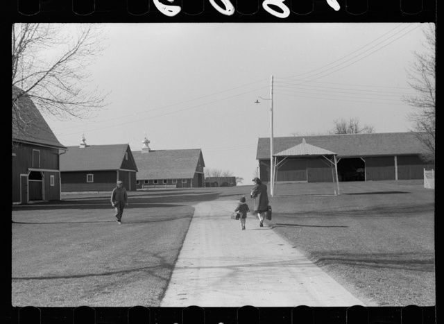 Fred Coulter's children coming home from school, Grundy County, Iowa