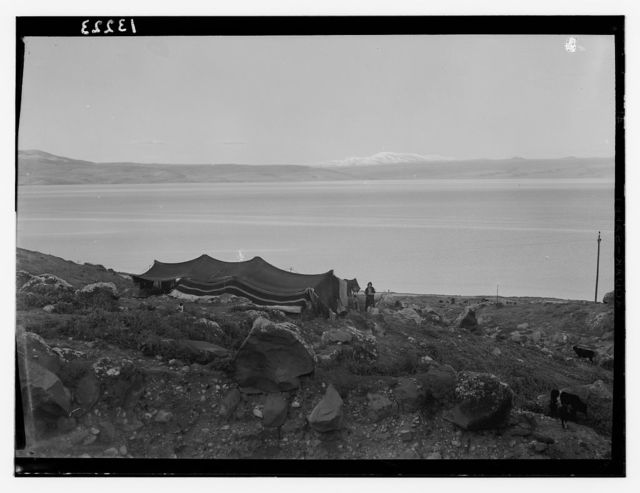 Galilee & Hermon with Bedouin tent in foreground fr[om] S. of baths