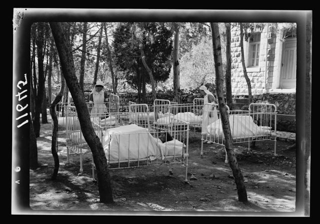 Galilee trip. Safad. Baby cots in the hospital pine grove