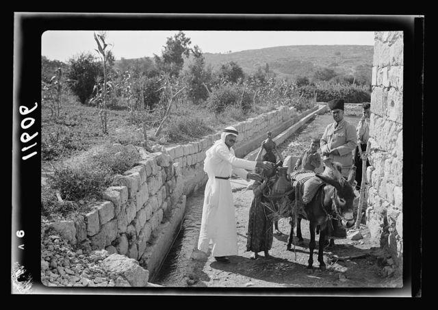 Galilee trip. Saffourieh (near Nazareth). Saforis (Sepphoris). Irrigation canal