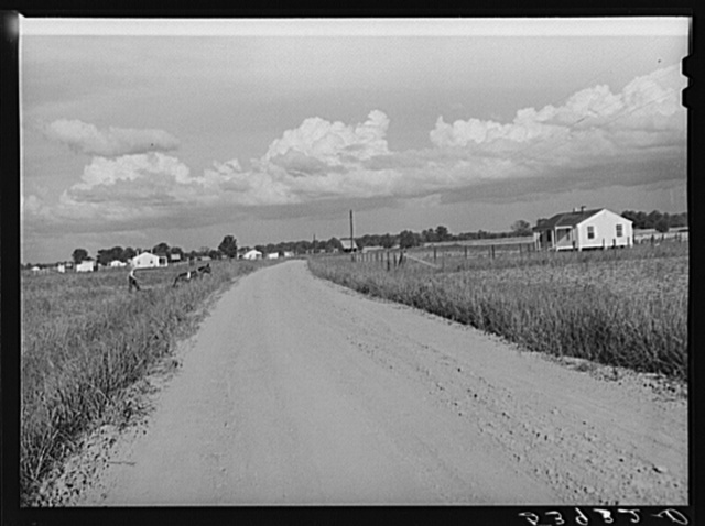 General view of Transylvania Project, Louisiana, road and homes