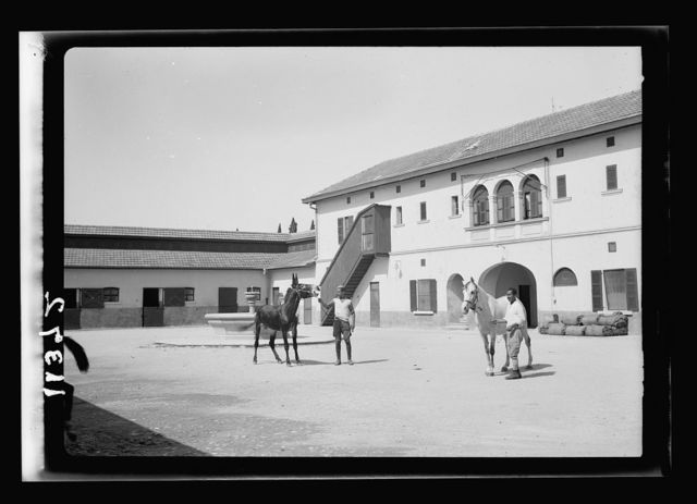 Government Stud Farm, Acre. A courtyard of horse stables