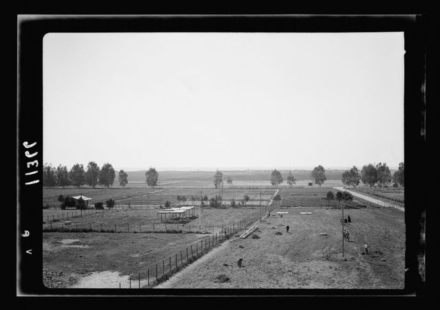 Government Stud Farm, Acre. The farm land looking west towards sea, concentration camp on horizon