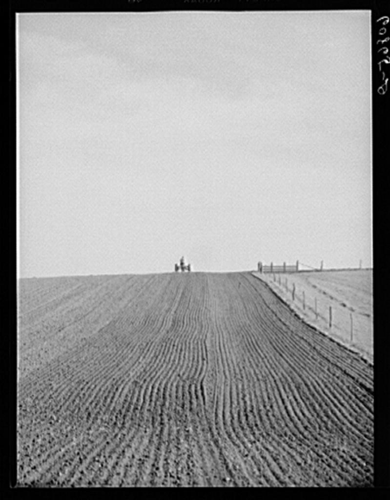 Harrowing the ground before corn planting. Jasper County, Iowa