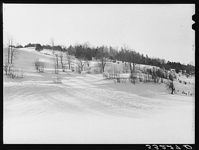 Hillside near Woodstock, Vermont