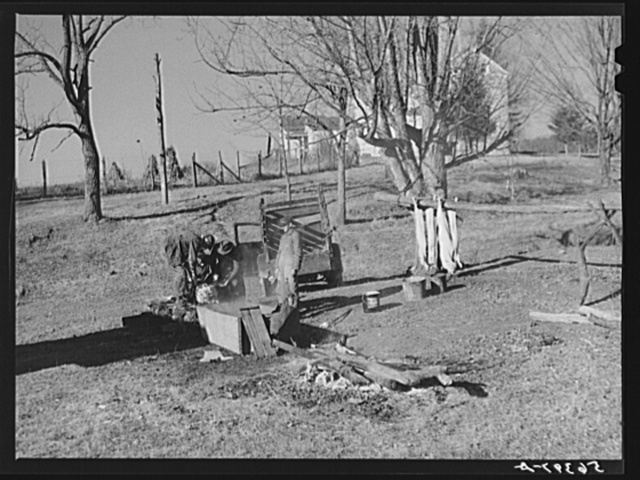 Hog killing near Luray, Virginia
