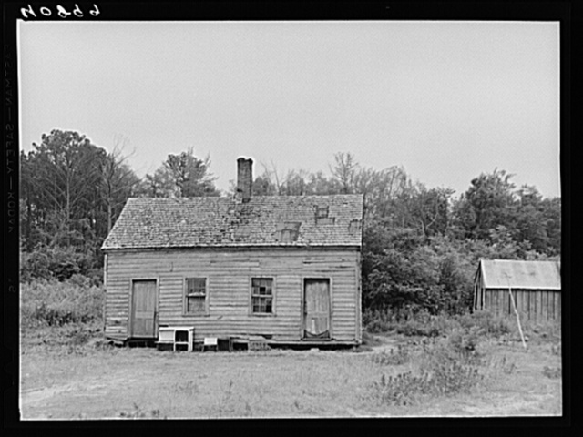 House occupied by migratory agricultural workers in a field near Accomac, Virginia