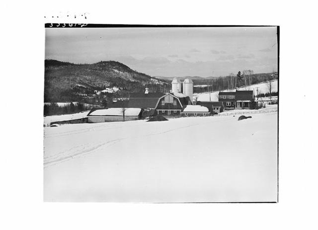 Iris dairy farm and drift fence near Franconia, New Hampshire