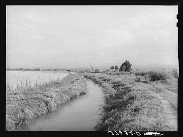 Irrigation ditch leading to farm, Montrose