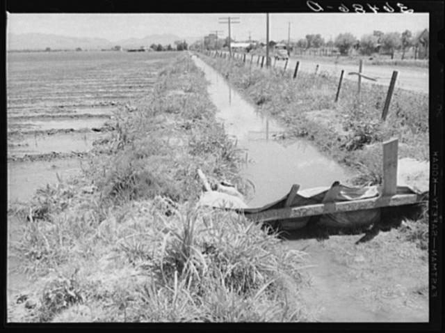 Irrigation ditch. Solomonsville, Graham County, Arizona