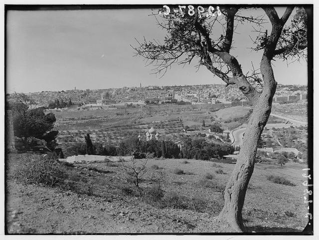 Jerusalem from lower slopes of Olivet