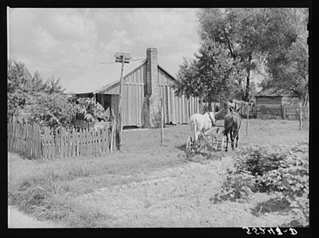 Knowlton Plantation, Perthshire. Mississippi Delta, Mississippi