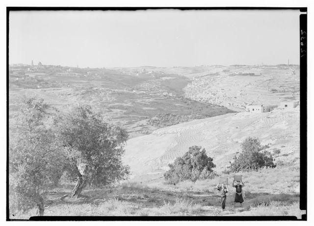 Later evening light on Jerusalem taken fr[om] s. near the Residency